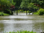 Bridge in Japanese Garden (Missouri Botanical Garden)