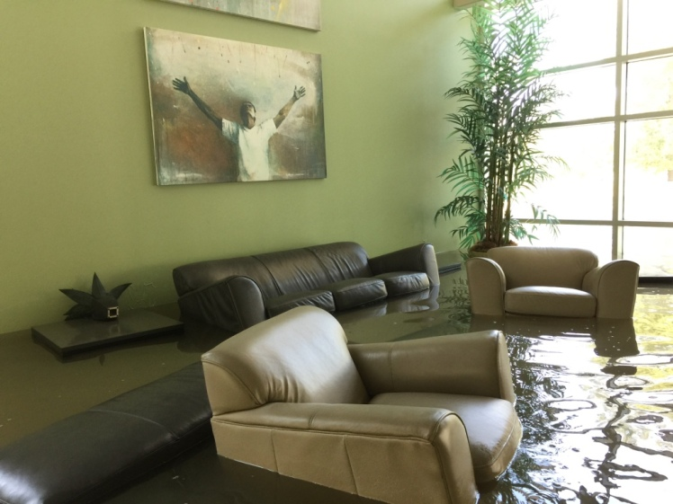 Harvey Chairs + Art